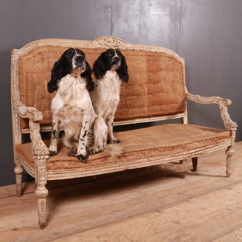 Wonderful Pair of 21st C Springer Spaniels